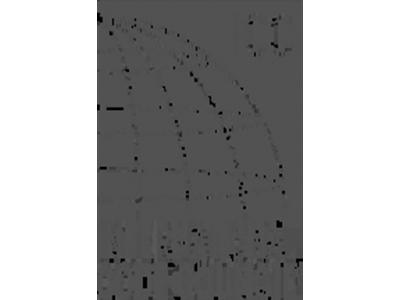 icc-bw